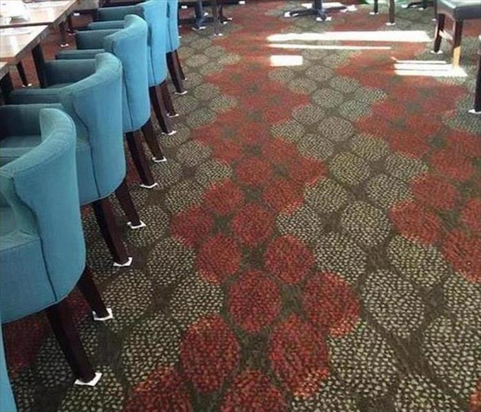 Tarpon Springs Commercial Carpet Is Soaked After