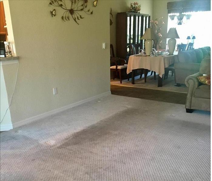 Water Damage and Cleaning Service--Trinity Before