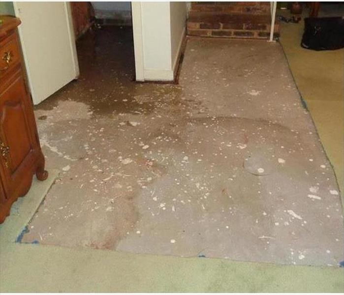 Tarpon Water Damage to a Home