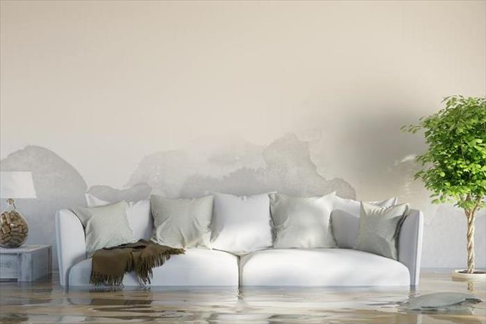 Water Damage Simple Steps to Prevent Tarpon Springs Residential Water Damage