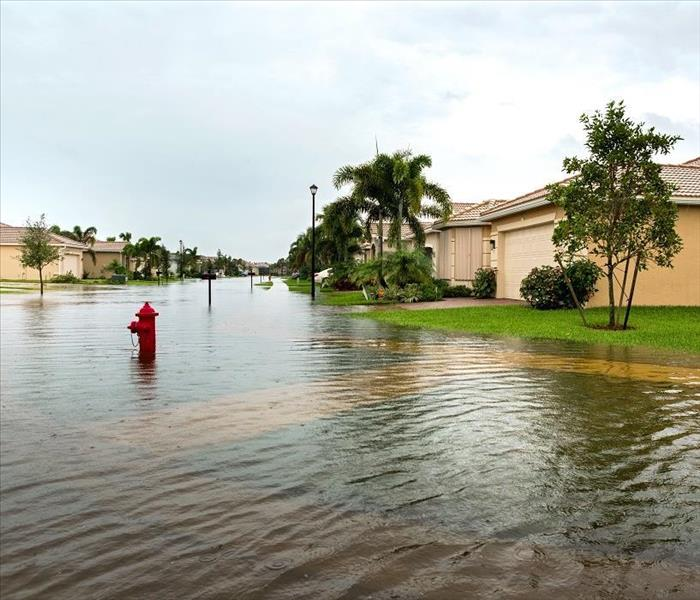 Water Damage Reliable Water Damage Restoration Options in Tarpon Springs