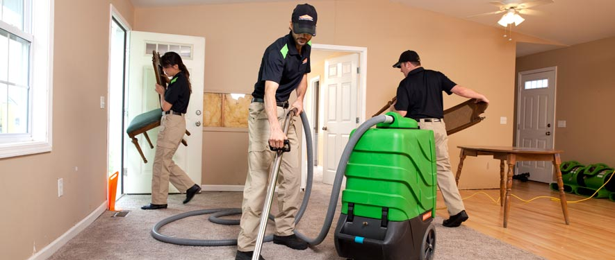 Tarpon Springs, FL cleaning services